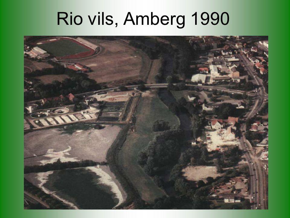 Rio vils, Amberg 1990