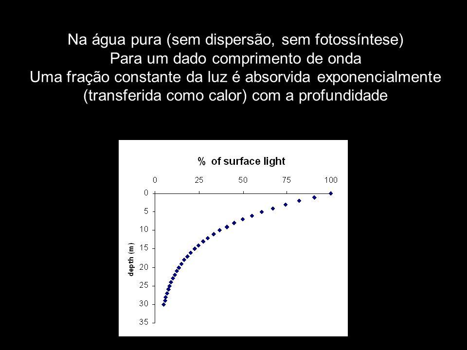 Na água pura (sem dispersão, sem fotossíntese) Para um dado comprimento de onda Uma fração constante da luz é absorvida exponencialmente (transferida como calor) com a profundidade
