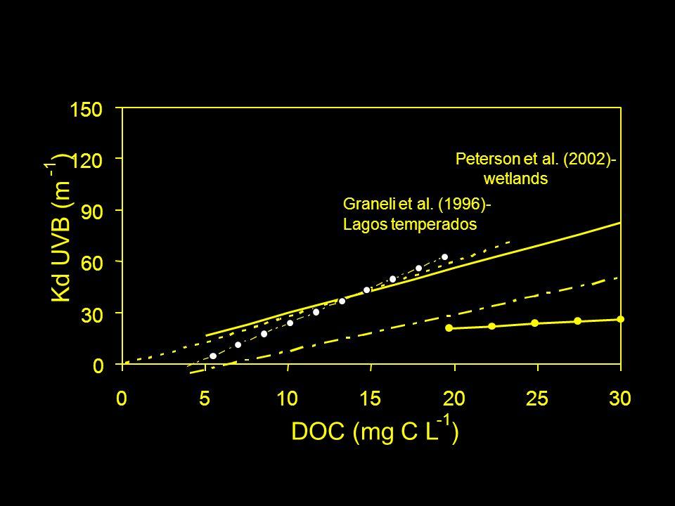 0 30 60 90 120 150 051015202530 DOC (mg C L ) Kd UVB (m ) Graneli et al.