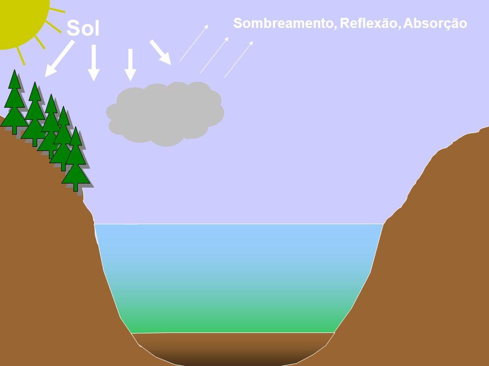 Carbono orgânico dissolvido Alóctone Autóctone Origem terrestre COD Algas e macrófitas Moléculas alifáticas Baixa capacidade de absorver luz Moléculas aromáticas Absorção de luz na faixa do UV COR Refratárias Lábeis CDOM