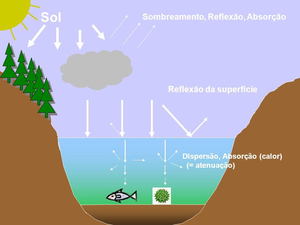 Efeitos sobre os ciclos biogeoquímicos A ciclagem de nitrogênio pode ser afetada pelo aumento de UVB através da inibição da nitrificação pelas bactérias e pela foto-decomposição de espécies inorgânicas simples tais como nitrato.
