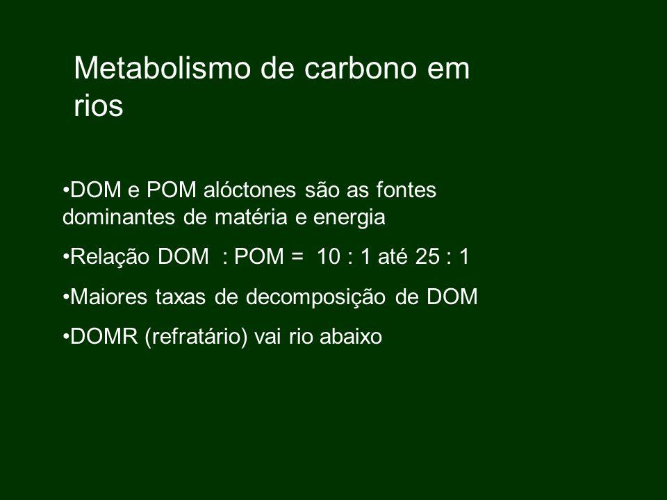 Metabolismo de carbono em rios DOM e POM alóctones são as fontes dominantes de matéria e energia Relação DOM : POM = 10 : 1 até 25 : 1 Maiores taxas d