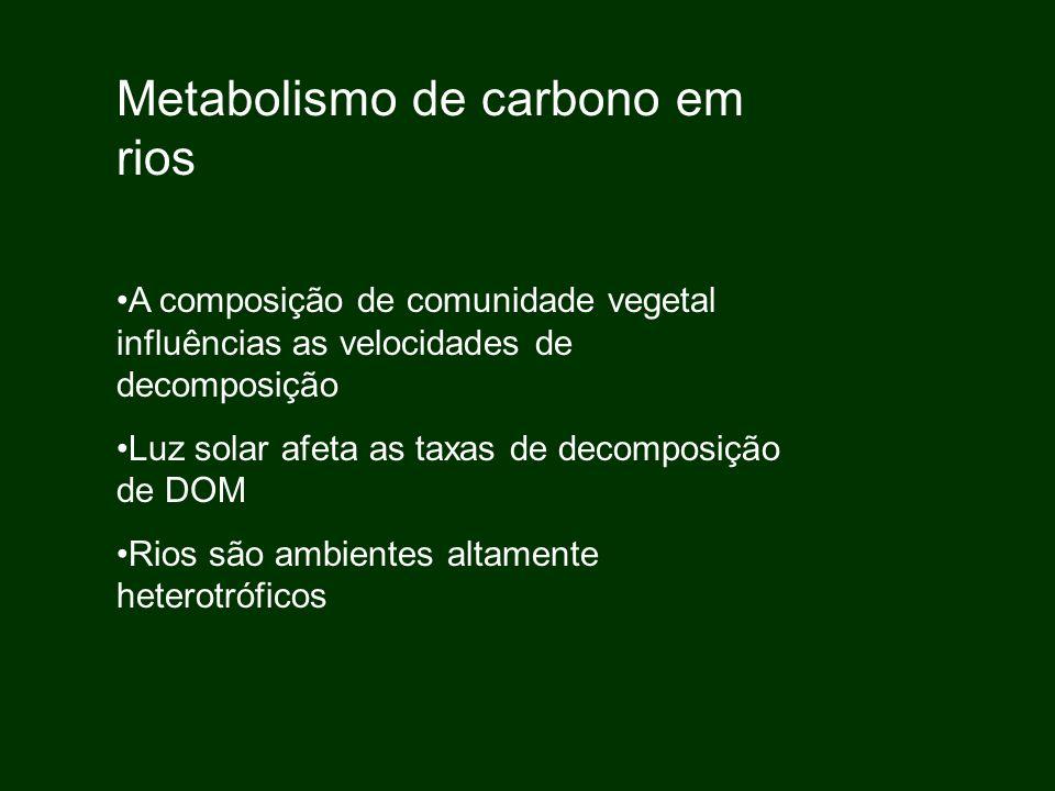 A composição de comunidade vegetal influências as velocidades de decomposição Luz solar afeta as taxas de decomposição de DOM Rios são ambientes altam