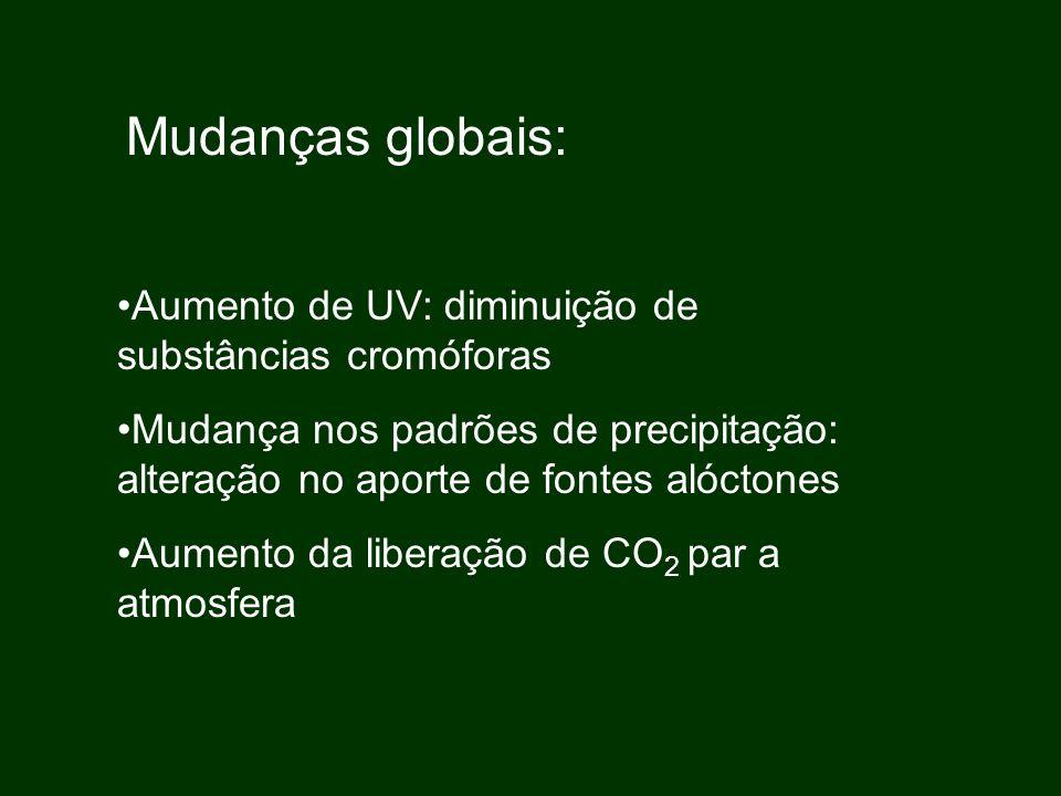 Mudanças globais: Aumento de UV: diminuição de substâncias cromóforas Mudança nos padrões de precipitação: alteração no aporte de fontes alóctones Aum