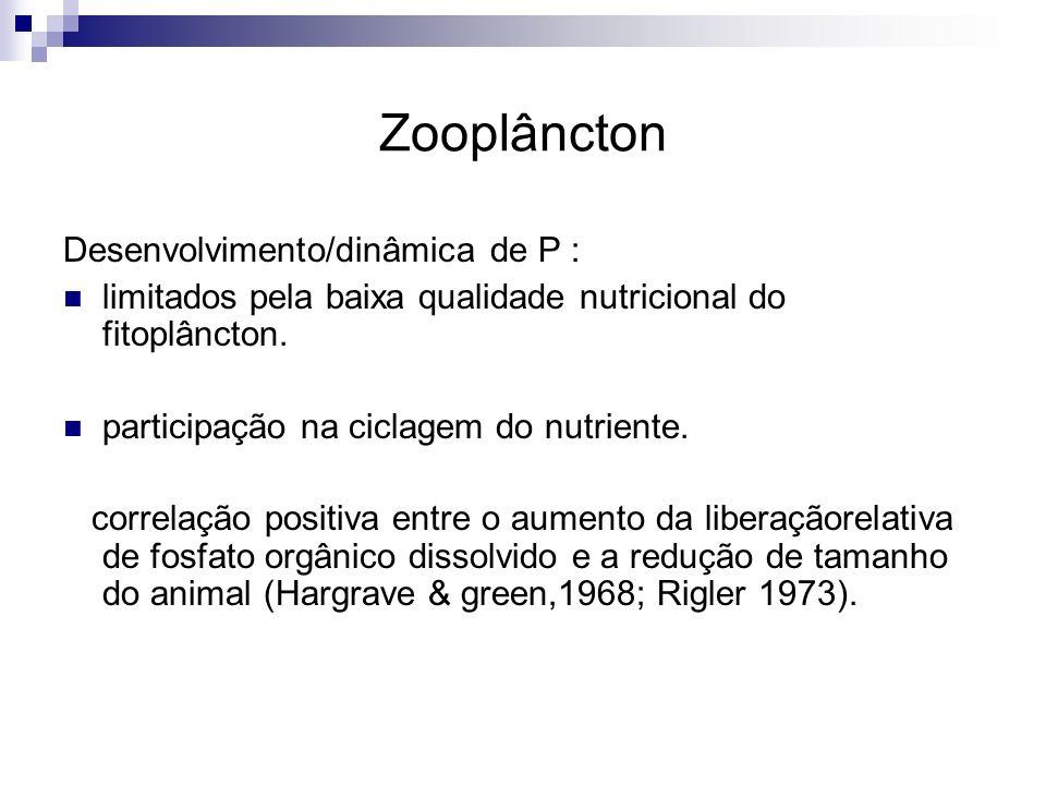Zooplâncton Desenvolvimento/dinâmica de P : limitados pela baixa qualidade nutricional do fitoplâncton. participação na ciclagem do nutriente. correla