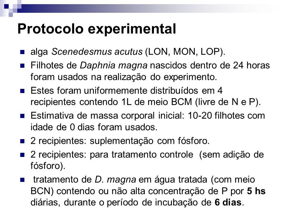 Protocolo experimental alga Scenedesmus acutus (LON, MON, LOP). Filhotes de Daphnia magna nascidos dentro de 24 horas foram usados na realização do ex
