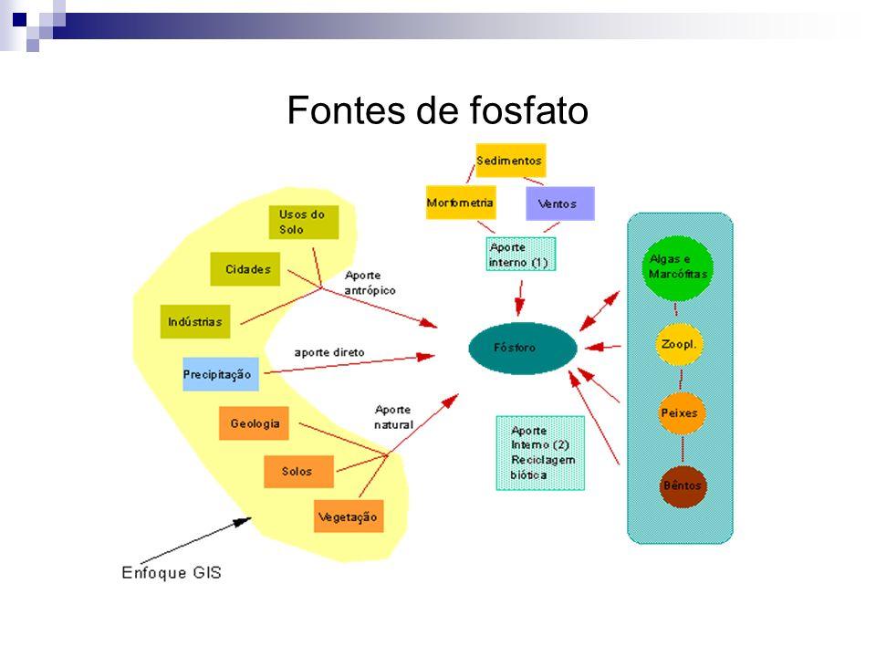 Fontes de fosfato