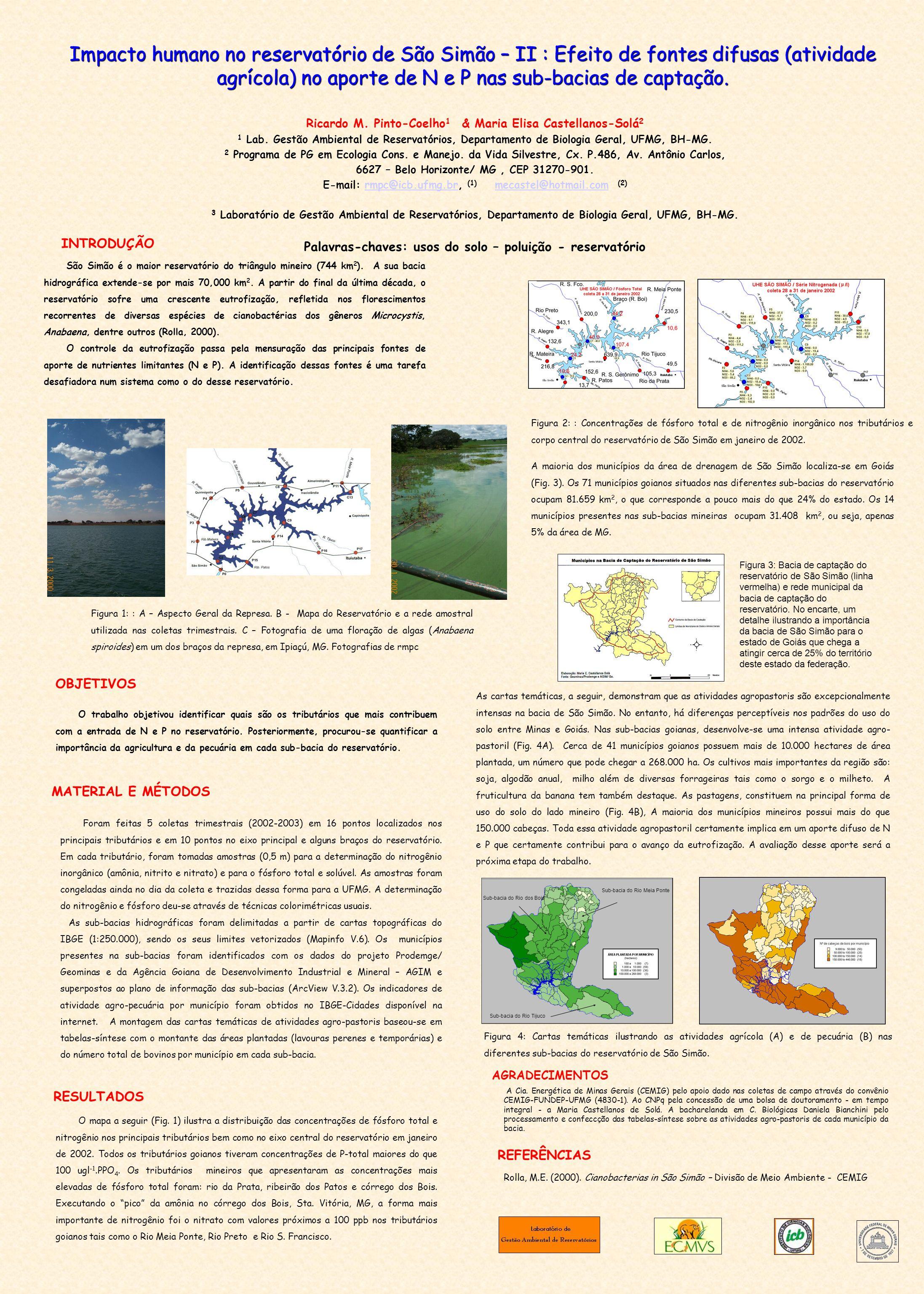 Impacto humano no reservatório de São Simão – II : Efeito de fontes difusas (atividade agrícola) no aporte de N e P nas sub-bacias de captação. Ricard