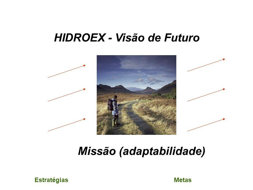 HIDROEX - Visão de Futuro Missão (adaptabilidade) EstratégiasMetas