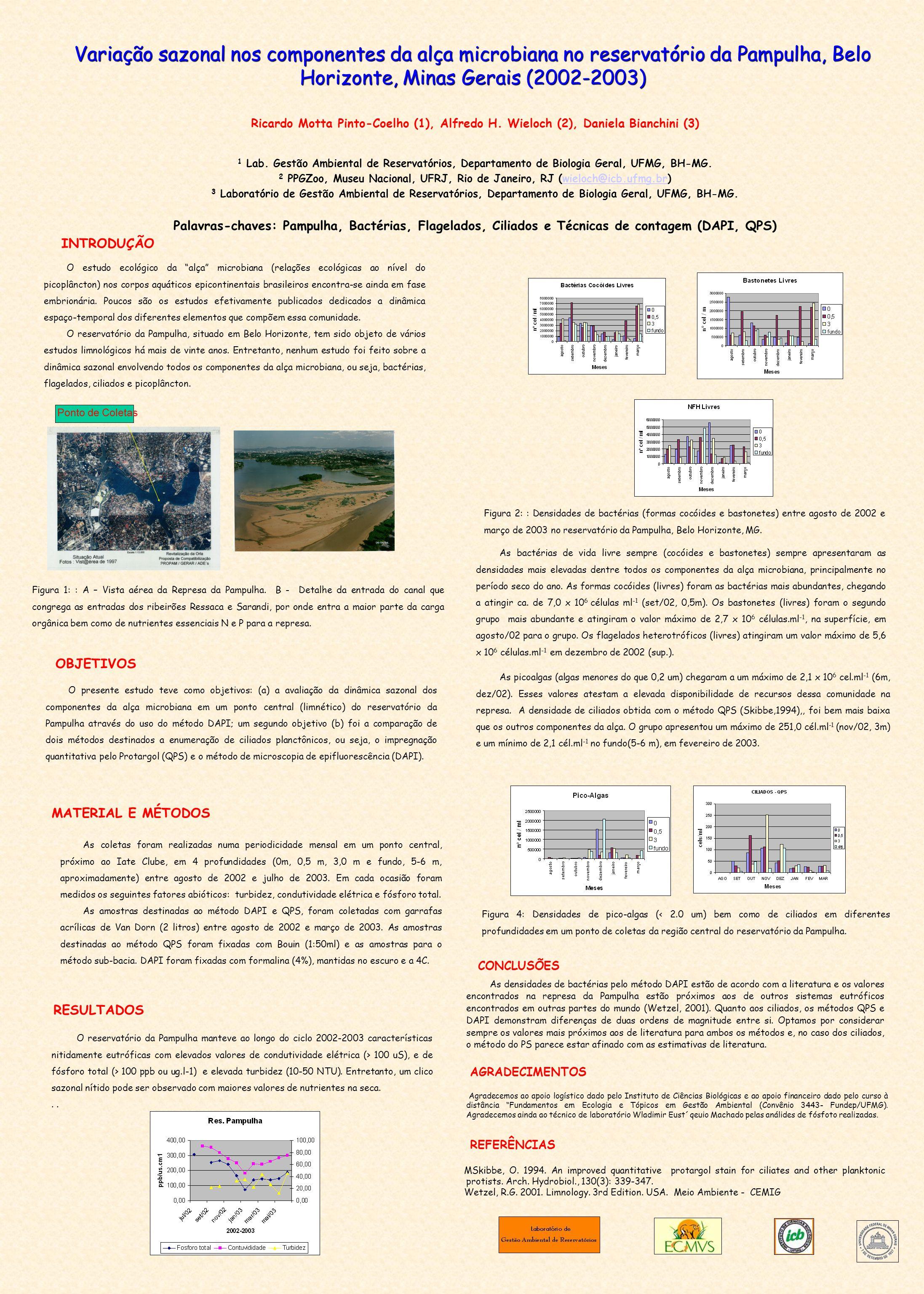 Variação sazonal nos componentes da alça microbiana no reservatório da Pampulha, Belo Horizonte, Minas Gerais (2002-2003) Ricardo Motta Pinto-Coelho (