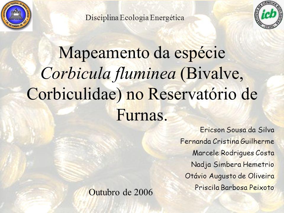 Mapeamento da espécie Corbicula fluminea (Bivalve, Corbiculidae) no Reservatório de Furnas. Ericson Sousa da Silva Fernanda Cristina Guilherme Marcele