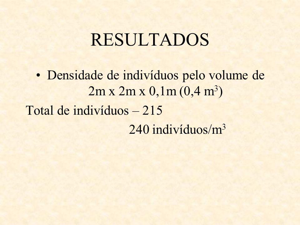 RESULTADOS Densidade de indivíduos pelo volume de 2m x 2m x 0,1m (0,4 m 3 ) Total de indivíduos – 215 240 indivíduos/m 3