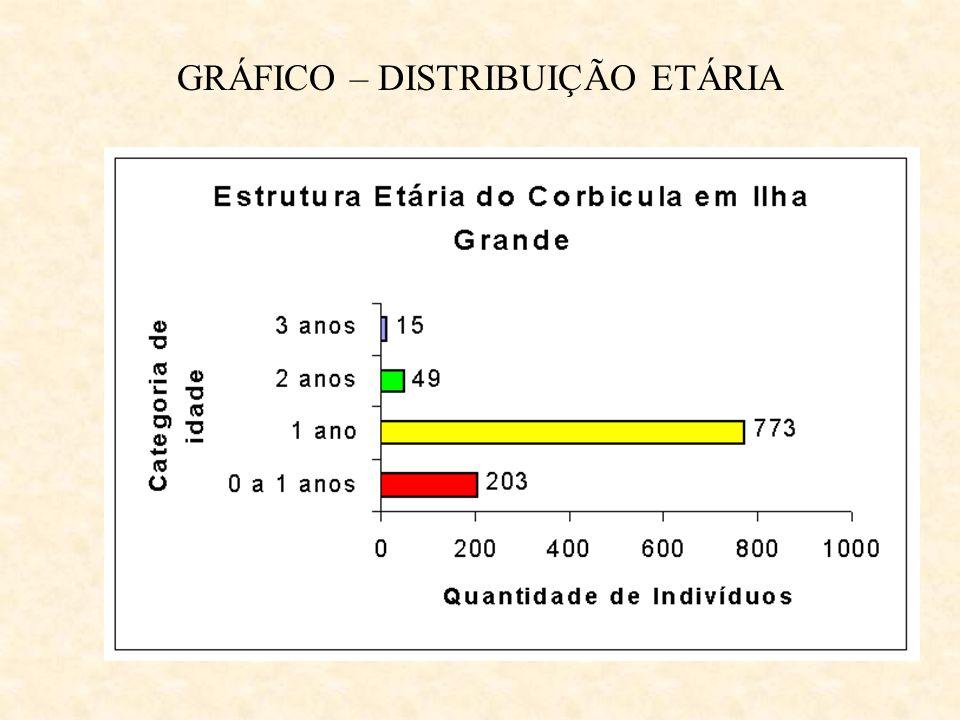 GRÁFICO – DISTRIBUIÇÃO ETÁRIA