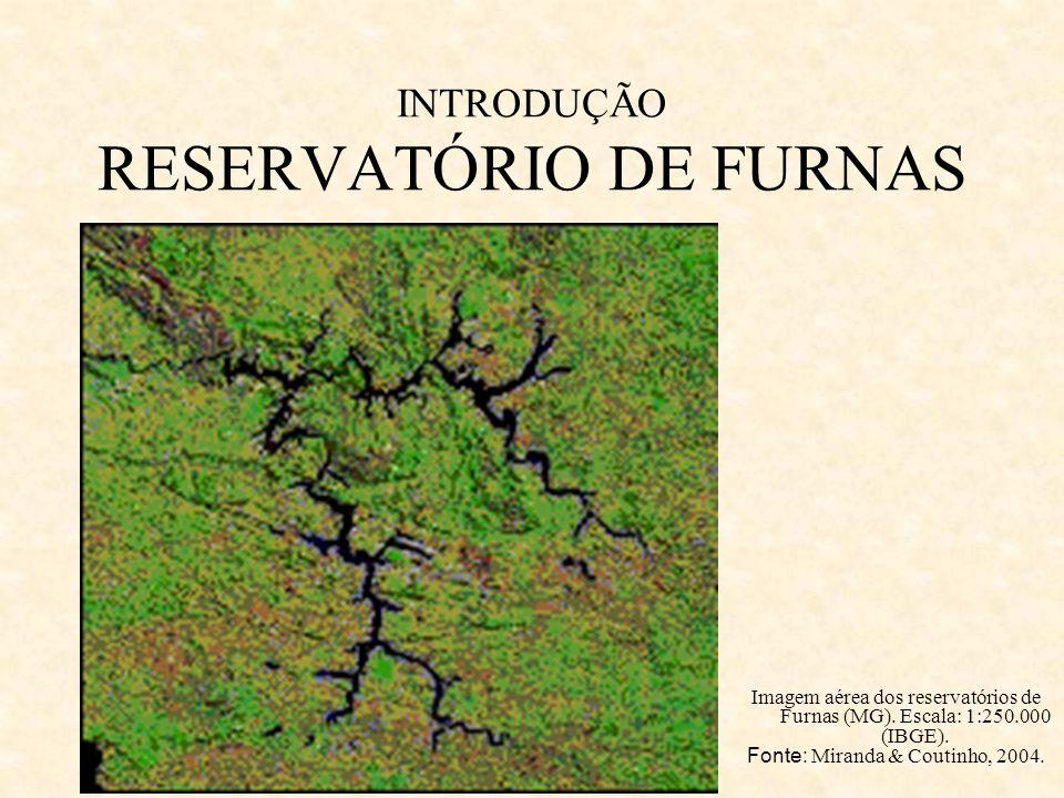 INTRODUÇÃO RESERVATÓRIO DE FURNAS Imagem aérea dos reservatórios de Furnas (MG). Escala: 1:250.000 (IBGE). Fonte: Miranda & Coutinho, 2004.