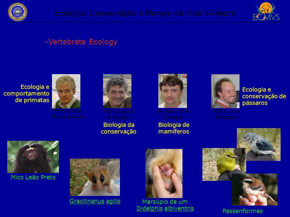 Ecologia, Conservação e Manejo da Vida Silvestre -Vertebrate Ecology PhD Anthony Brome Rylands PhD Gustavo A. B. Fonseca PhD Marcos Rodrigues Dr. Fláv