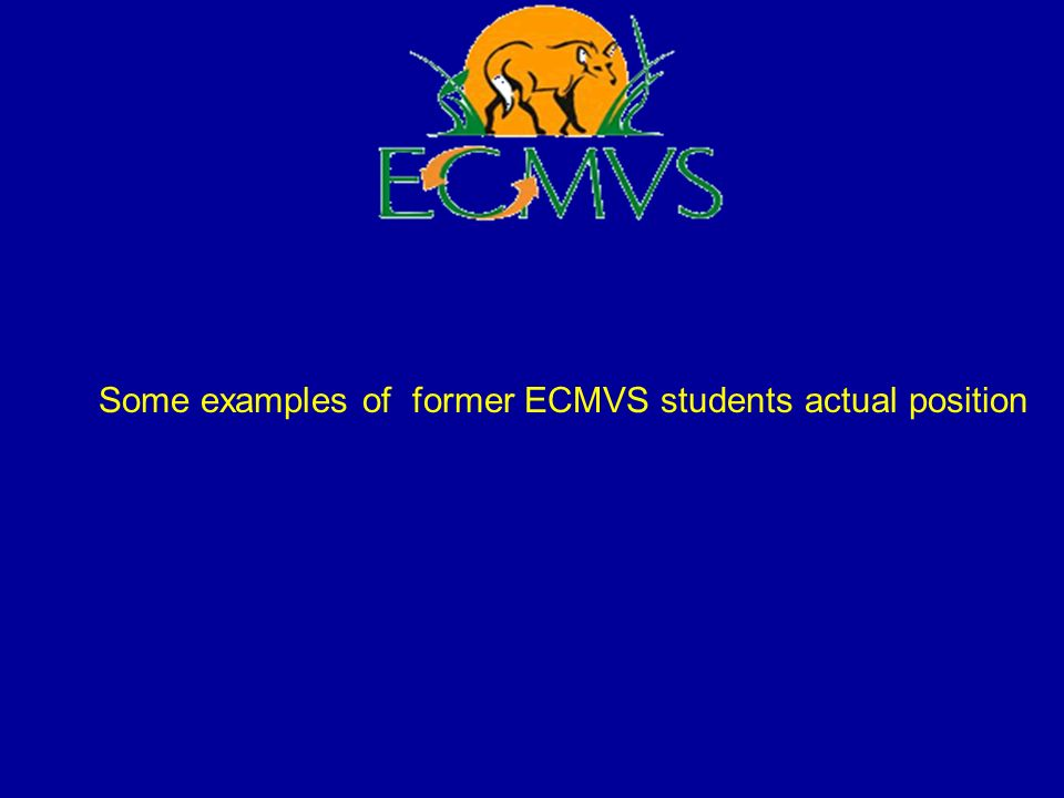 Some examples of former ECMVS students actual position