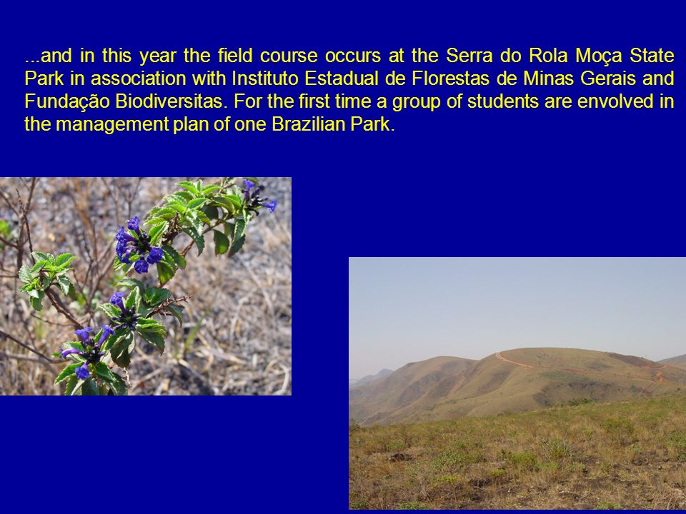 ...and in this year the field course occurs at the Serra do Rola Moça State Park in association with Instituto Estadual de Florestas de Minas Gerais a