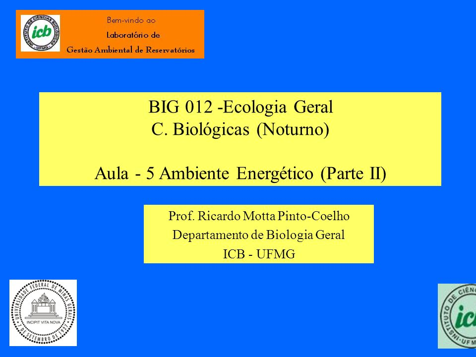 BIG 012 -Ecologia Geral C. Biológicas (Noturno) Aula - 5 Ambiente Energético (Parte II) Prof. Ricardo Motta Pinto-Coelho Departamento de Biologia Gera