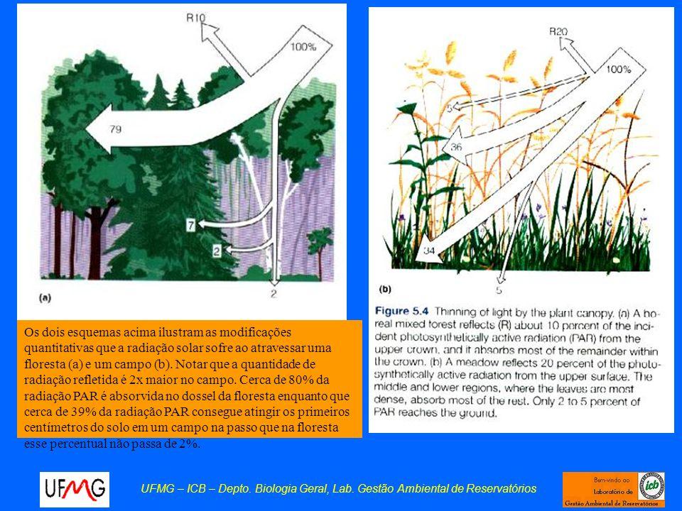 UFMG – ICB – Depto. Biologia Geral, Lab. Gestão Ambiental de Reservatórios Os dois esquemas acima ilustram as modificações quantitativas que a radiaçã
