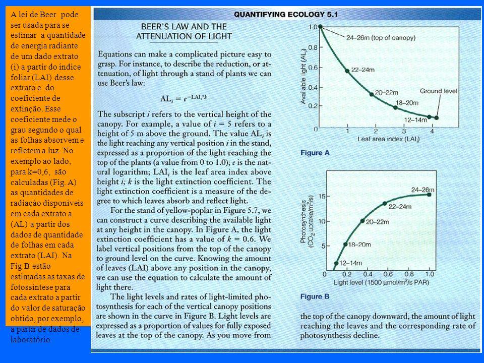 A lei de Beer pode ser usada para se estimar a quantidade de energia radiante de um dado extrato (i) a partir do índice foliar (LAI) desse extrato e d