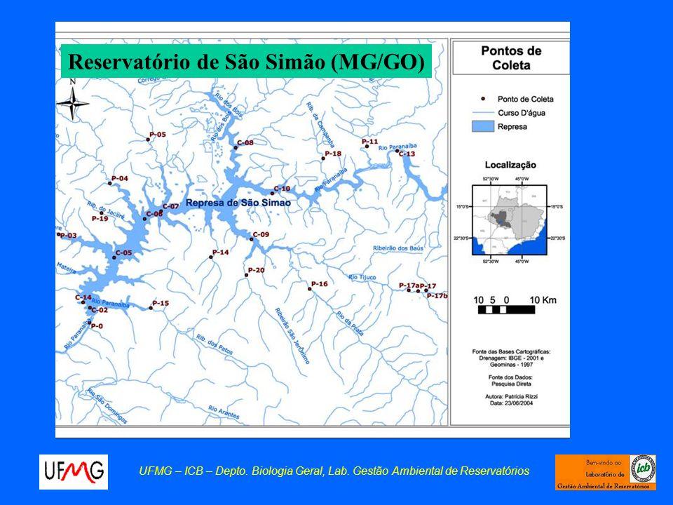 Waterblooms de cianobactérias Ocorrência de florescimento massivo de cianobactérias no reservatório de São Simão (MG/GO), em janeiro de 2002.
