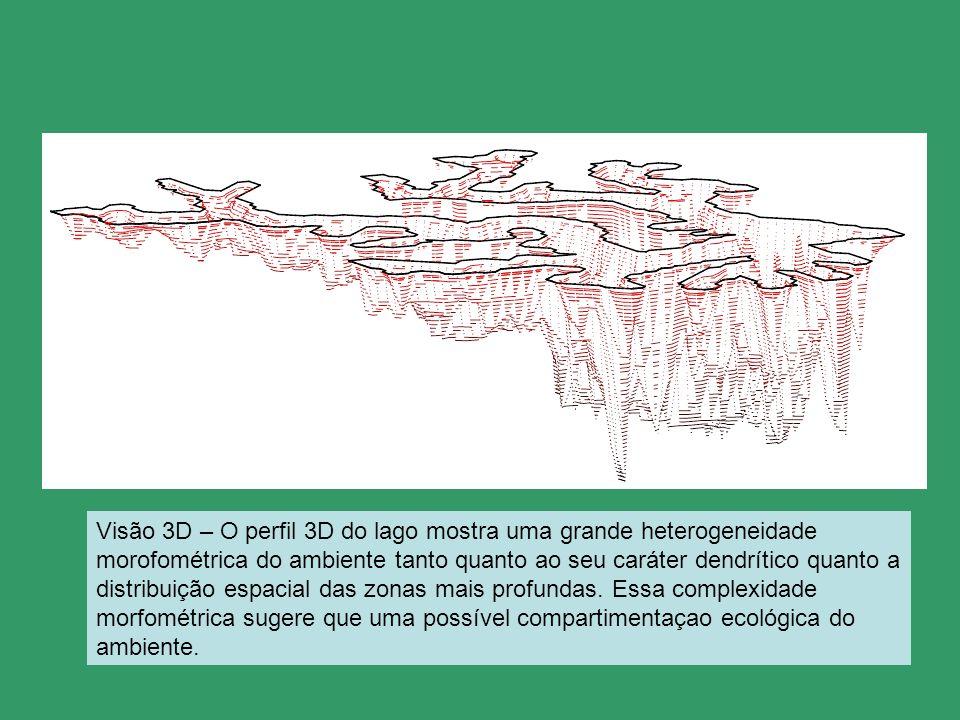 N Visão 3D – O perfil 3D do lago mostra uma grande heterogeneidade morofométrica do ambiente tanto quanto ao seu caráter dendrítico quanto a distribui