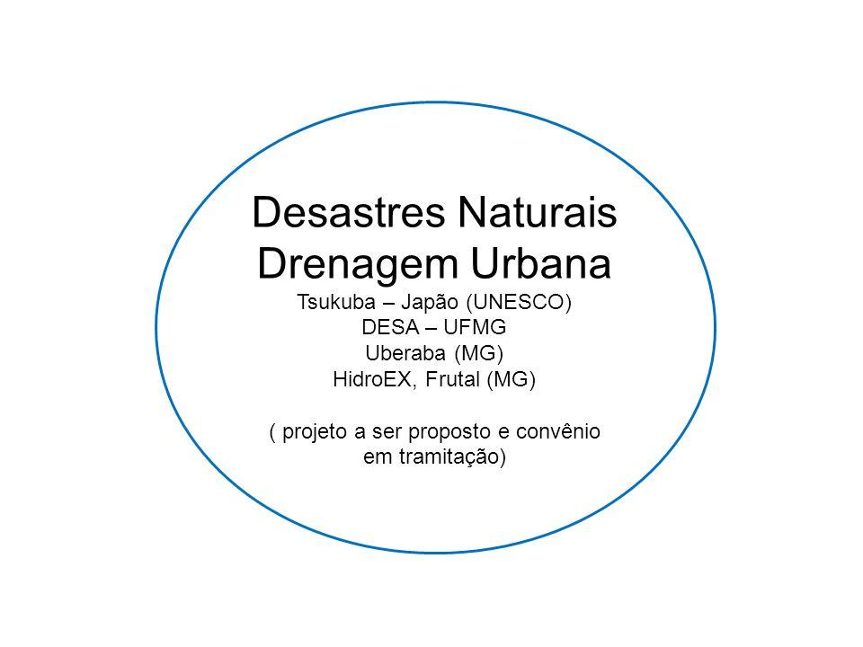 Desastres Naturais Drenagem Urbana Tsukuba – Japão (UNESCO) DESA – UFMG Uberaba (MG) HidroEX, Frutal (MG) ( projeto a ser proposto e convênio em trami