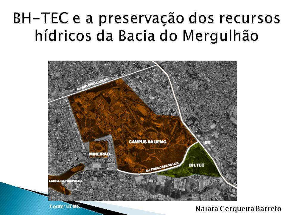 Naiara Cerqueira Barreto Fonte: UFMG