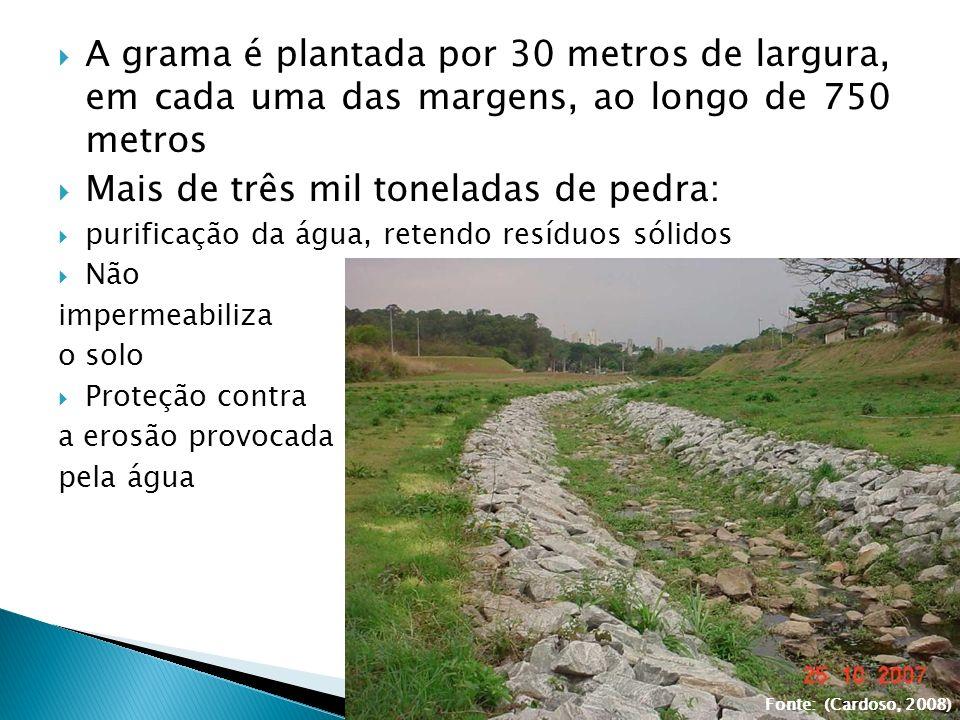 A grama é plantada por 30 metros de largura, em cada uma das margens, ao longo de 750 metros Mais de três mil toneladas de pedra: purificação da água,