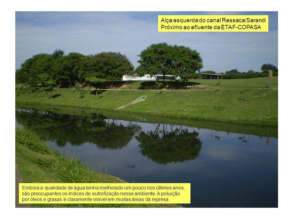 Alça esquerda do canal Ressaca/Sarandi Próximo ao efluente da ETAF-COPASA Embora a qualidade de água tenha melhorado um pouco nos últimos anos, são pr