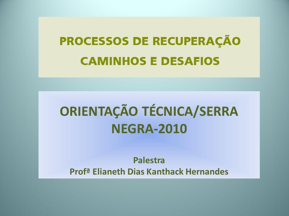 ORIENTAÇÃO TÉCNICA/SERRA NEGRA-2010 Palestra Profª Elianeth Dias Kanthack Hernandes