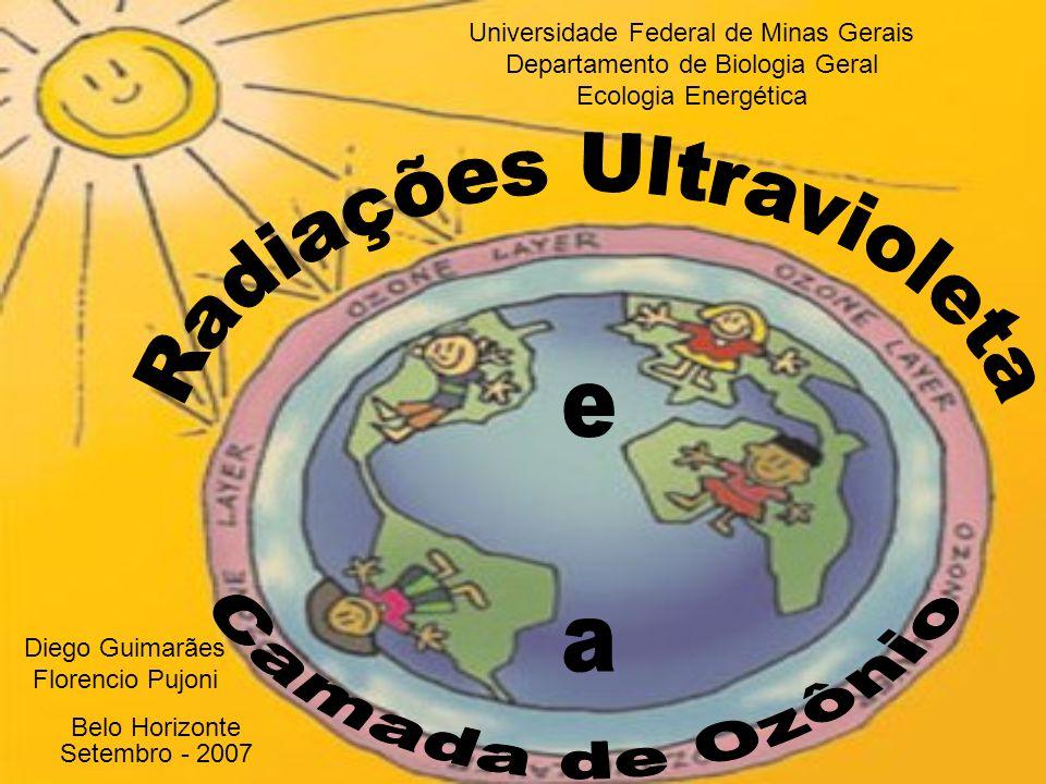 Universidade Federal de Minas Gerais Departamento de Biologia Geral Ecologia Energética Belo Horizonte Setembro - 2007 Diego Guimarães Florencio Pujoni