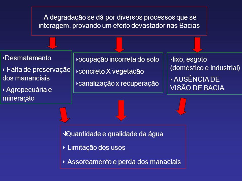 A degradação se dá por diversos processos que se interagem, provando um efeito devastador nas Bacias Desmatamento Falta de preservação dos mananciais