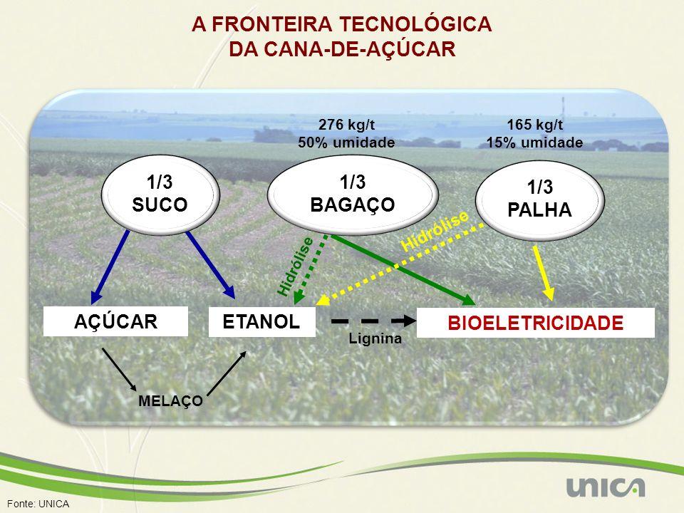 Fonte: UNICA AÇÚCAR ETANOL BIOELETRICIDADE MELAÇO 165 kg/t 15% umidade 276 kg/t 50% umidade Hidrólise Lignina A FRONTEIRA TECNOLÓGICA DA CANA-DE-AÇÚCA