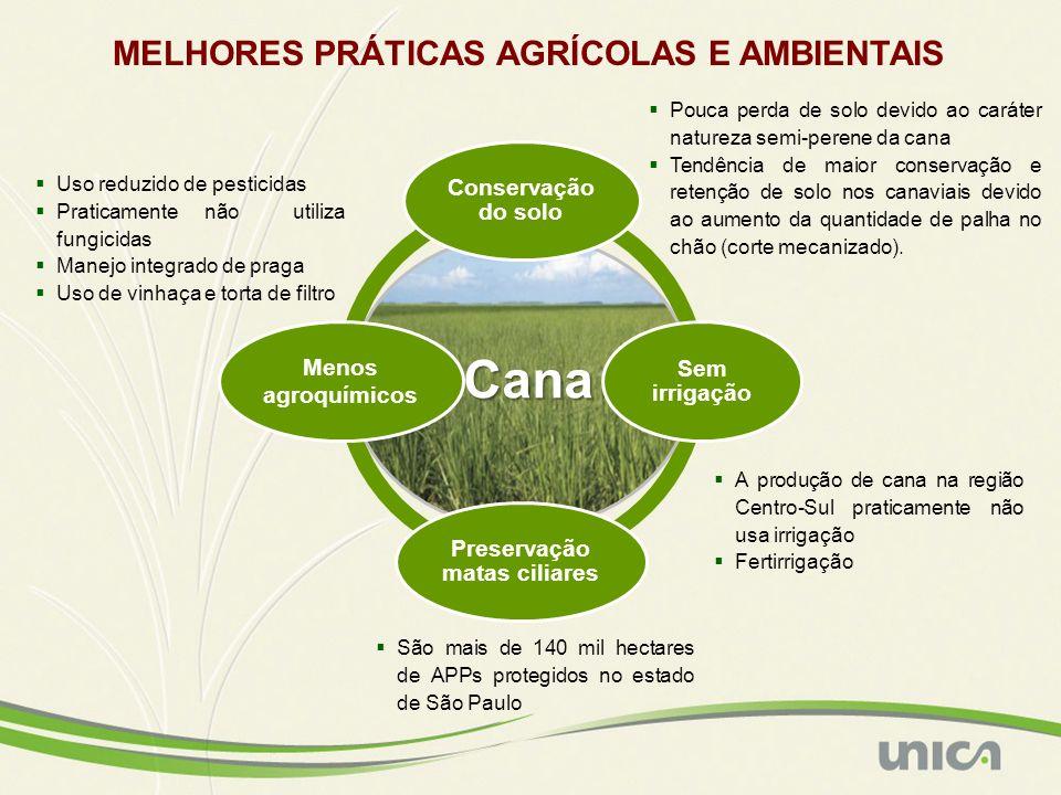 MELHORES PRÁTICAS AGRÍCOLAS E AMBIENTAIS Cana Cana Conservação do solo Sem irrigação Preservação matas ciliares Menos agroquímicos Pouca perda de solo