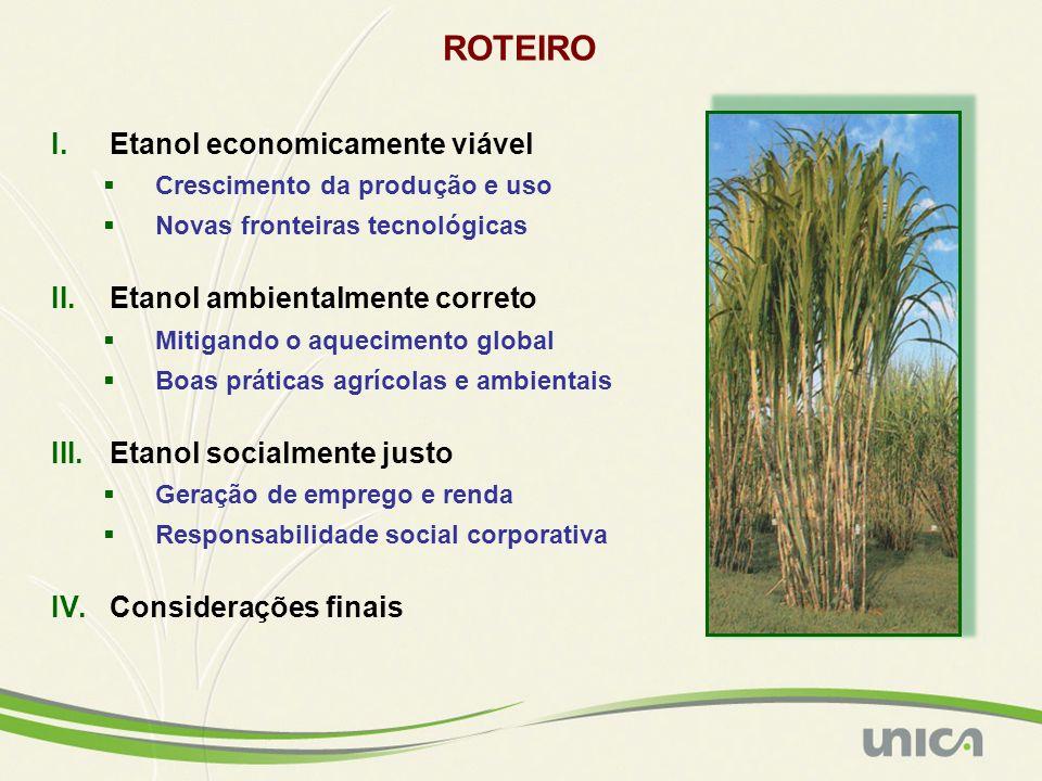 Madeira (Santo Antônio) (2.000 MWm) Itaipu (9.699 MWm) Angra 3 (1.200 MWm) POTENCIAL DE GERAÇÃO DE BIOELETRICIDADE NO BRASIL Pressupostos para cálculo do potencial: a) safra 2006/2007: realizado; b) safra 2012/13 estimativa baseada nos seguintes valores: 695 milhões de toneladas de cana-de-açúcar, 1 tonelada de cana-de-açúcar produz 250 kg de bagaço e 204 kg de palha/ponta, 1 tonelada de cana (só bagaço) gera 85,6 KWh para exportação, 1 tonelada de cana (bagaço + palha/ponta) gera 199,9 KWh para exportação; c) demais anos: valores estimados a partir de uma tendência de crescimento.