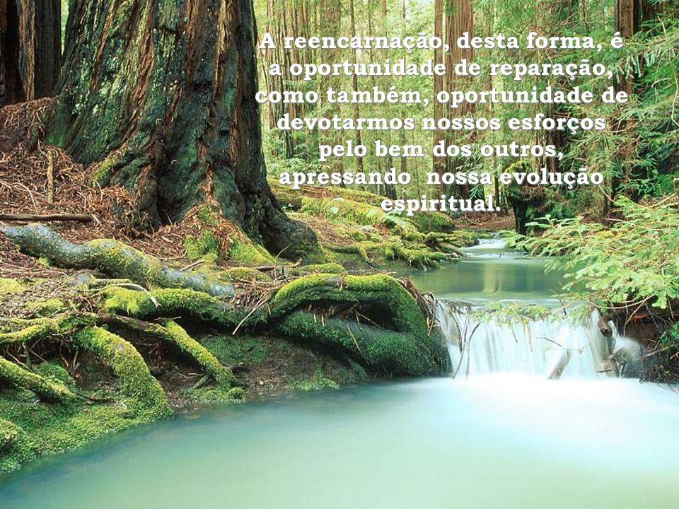 A reencarnação, desta forma, é a oportunidade de reparação, como também, oportunidade de devotarmos nossos esforços pelo bem dos outros, apressando nossa evolução espiritual.