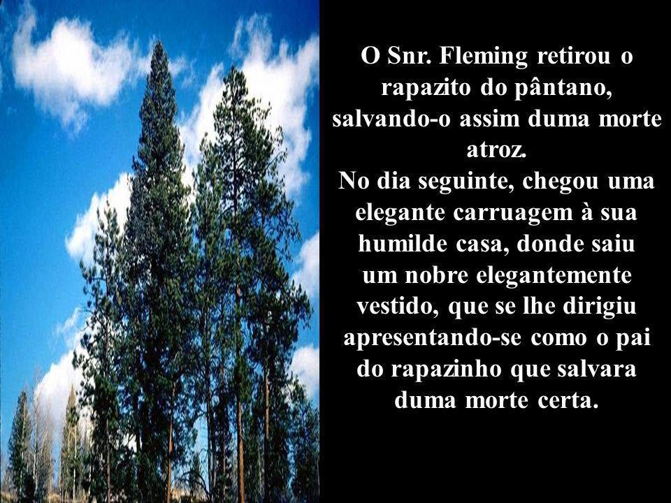 O Snr.Fleming retirou o rapazito do pântano, salvando-o assim duma morte atroz.