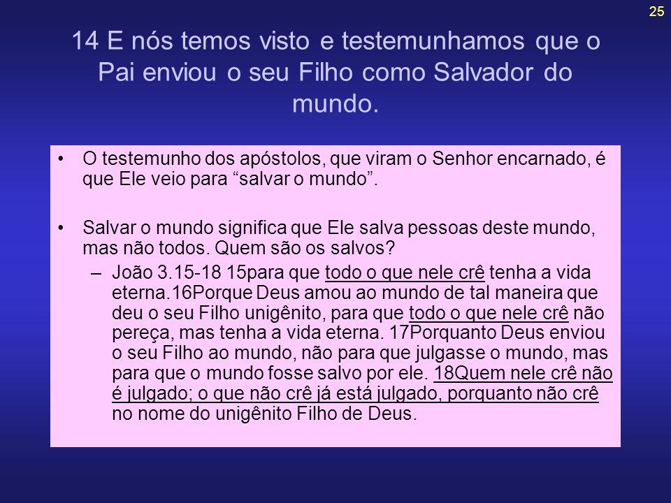 25 14 E nós temos visto e testemunhamos que o Pai enviou o seu Filho como Salvador do mundo. O testemunho dos apóstolos, que viram o Senhor encarnado,