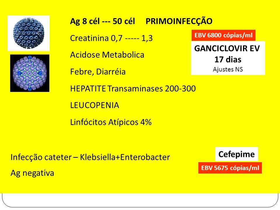Ag 8 cél --- 50 cél PRIMOINFECÇÃO Creatinina 0,7 ----- 1,3 Acidose Metabolica Febre, Diarréia HEPATITE Transaminases 200-300 LEUCOPENIA Linfócitos Atí