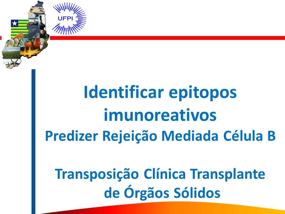Identificar epitopos imunoreativos Predizer Rejeição Mediada Célula B Transposição Clínica Transplante de Órgãos Sólidos