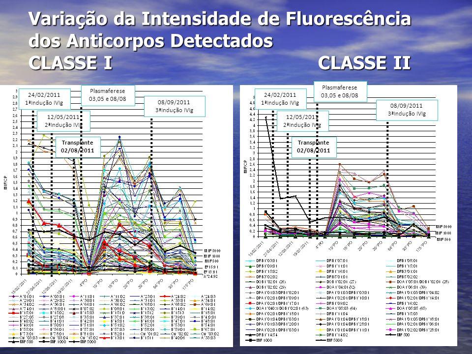 Variação da Intensidade de Fluorescência dos Anticorpos Detectados CLASSE I CLASSE II 24/02/2011 1ªIndução IVIg 12/05/2011 2ªIndução IVIg Transplante