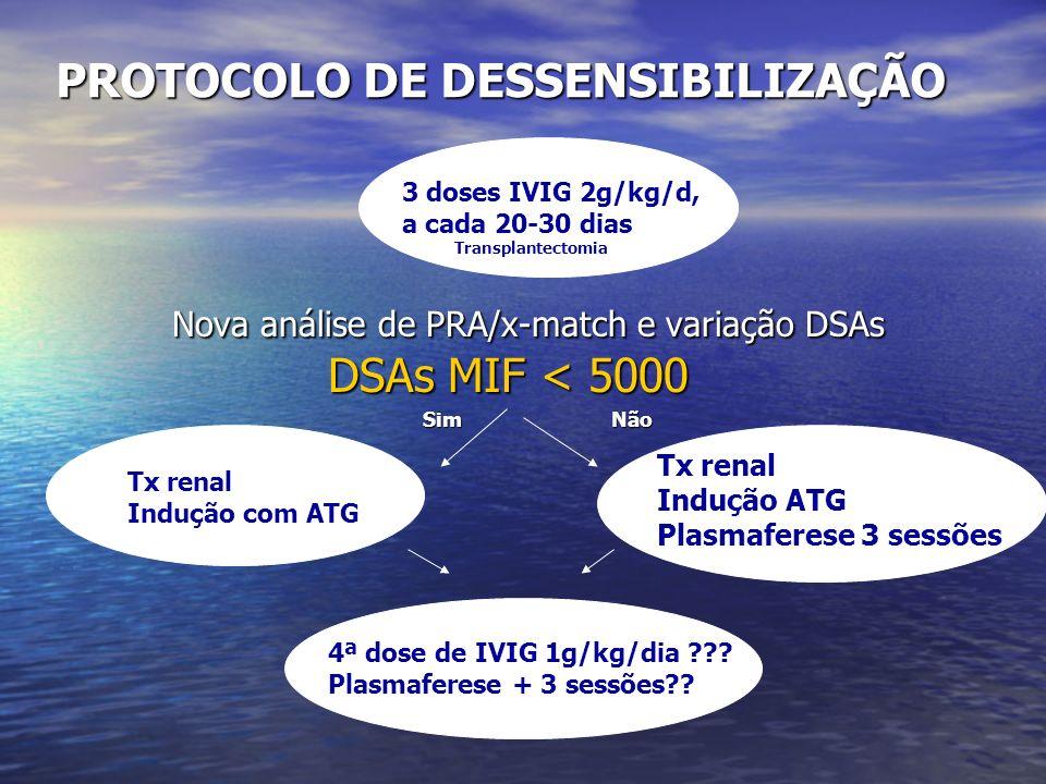 Variação da Intensidade de Fluorescência dos Anticorpos Detectados – CLASSE I MFI 5000 MFI 1000 MFI 500 Pré 5ºPO 10ºPO 14ºPO 30ºPO 120ºPO 180ºPO 12,5 8,7 5,4 2,68 1,4 0 MIF/CP