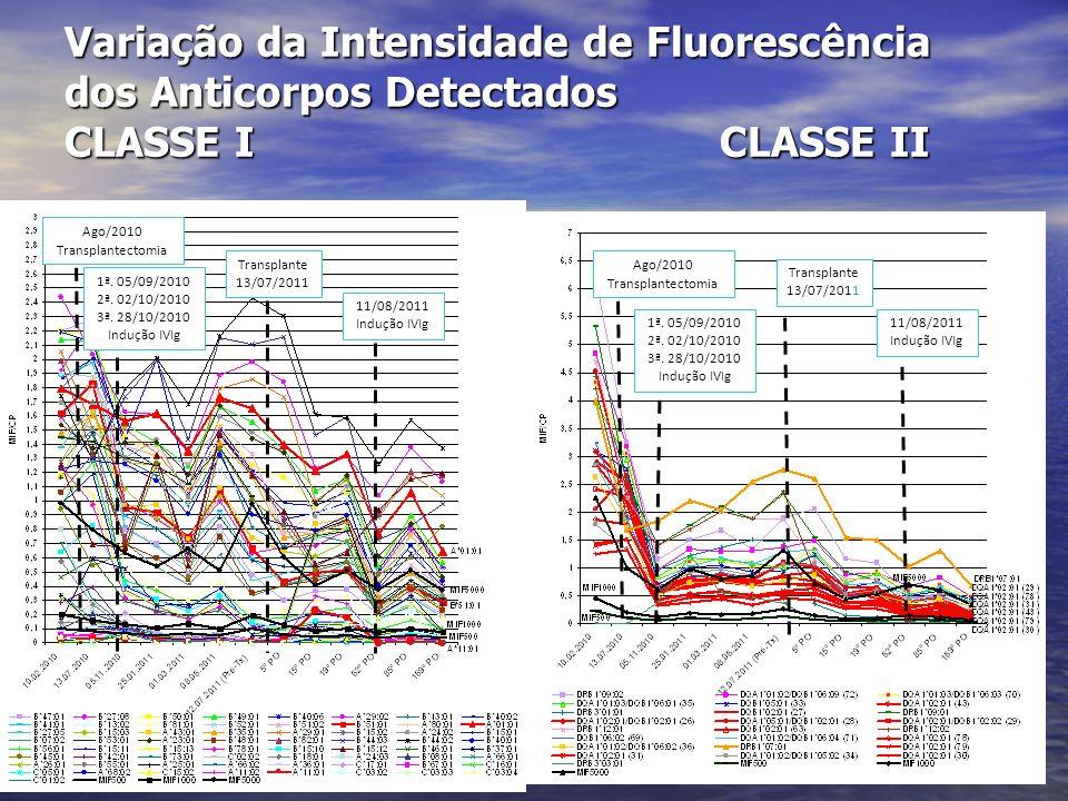 Variação da Intensidade de Fluorescência dos Anticorpos Detectados – CLASSE I Pré 1 o PO 4 o PO 7 o PO 30 o PO 60 o PO 90 o PO 120 o PO 150 o PO 240 o PO 12 10 8 6 4 2 0 MFI 5000 MFI 1000 MFI 500 MIF/CP