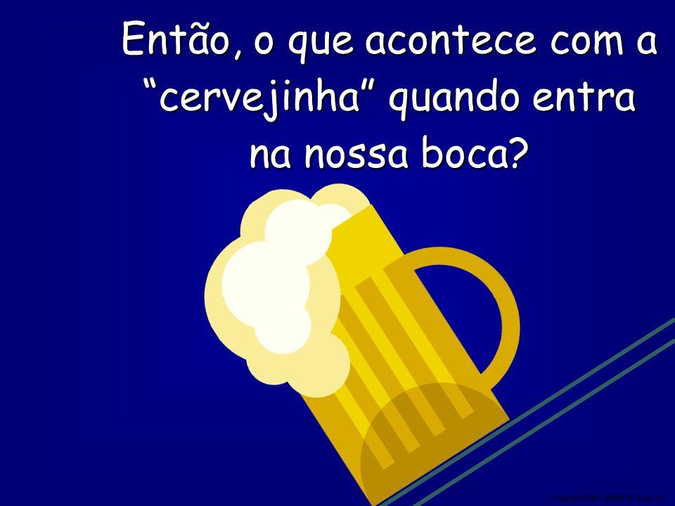 Então, o que acontece com a cervejinha quando entra na nossa boca? Copyright 2008 – MARPAN Seguros