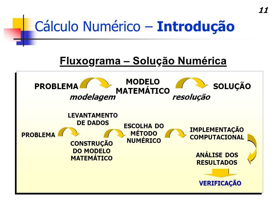 11 Fluxograma – Solução Numérica PROBLEMA MODELO MATEMÁTICO SOLUÇÃO modelagemresolução PROBLEMA ESCOLHA DO MÉTODO NUMÉRICO IMPLEMENTAÇÃO COMPUTACIONAL