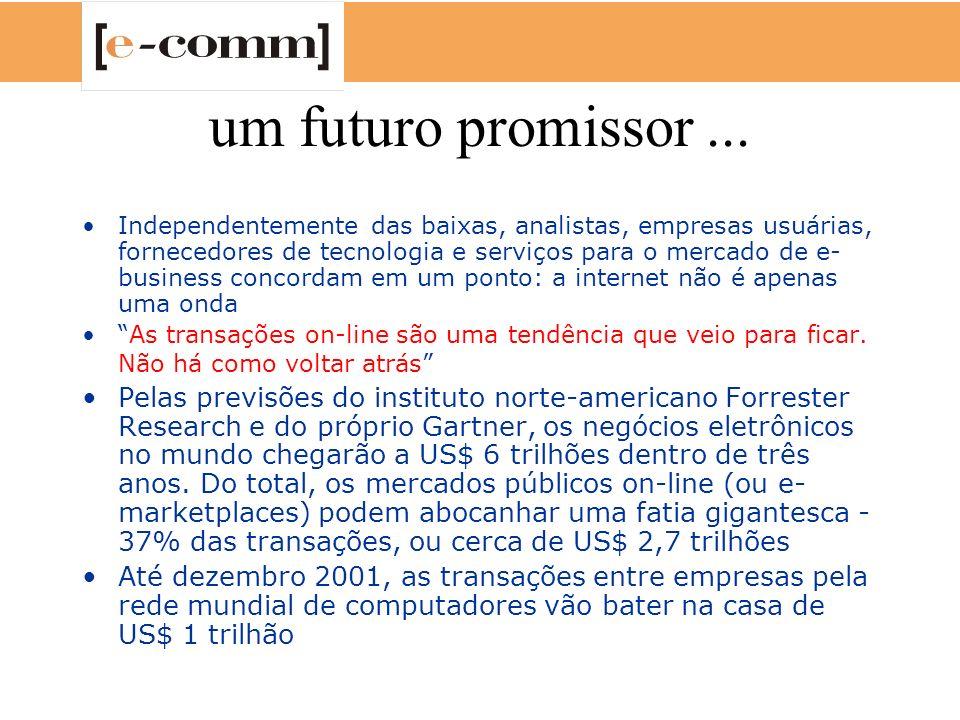 um futuro promissor... Independentemente das baixas, analistas, empresas usuárias, fornecedores de tecnologia e serviços para o mercado de e- business