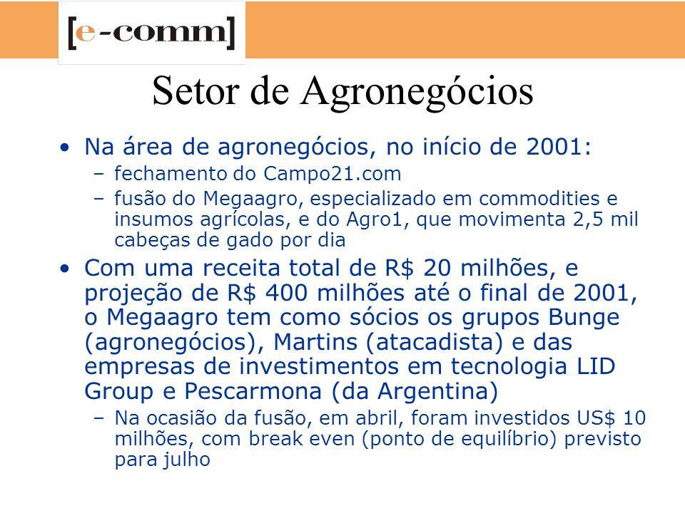 Setor de Agronegócios Na área de agronegócios, no início de 2001: –fechamento do Campo21.com –fusão do Megaagro, especializado em commodities e insumo