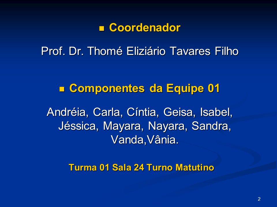 2 Coordenador Coordenador Prof. Dr. Thomé Eliziário Tavares Filho Componentes da Equipe 01 Componentes da Equipe 01 Andréia, Carla, Cíntia, Geisa, Isa
