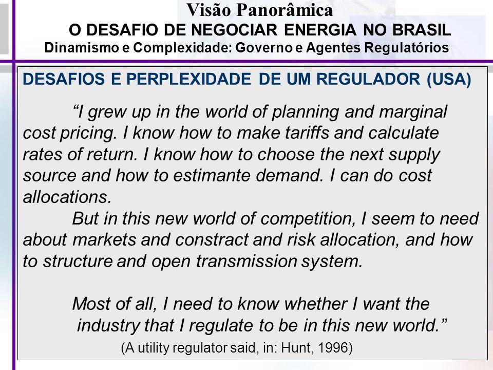 10 Visão Panorâmica O DESAFIO DE NEGOCIAR ENERGIA NO BRASIL Dinamismo e Complexidade: Governo e Agentes Regulatórios DESAFIOS E PERPLEXIDADE DE UM REG